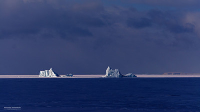 Icebergs trapped in the sea ice in the North Start Bay, Thule.